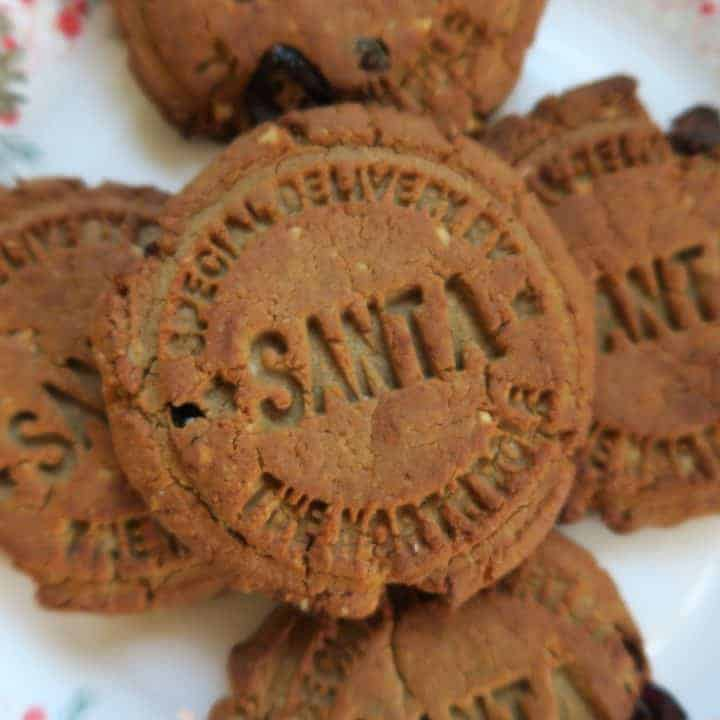 Gluten free & dairy free spiced protein Christmas cookies
