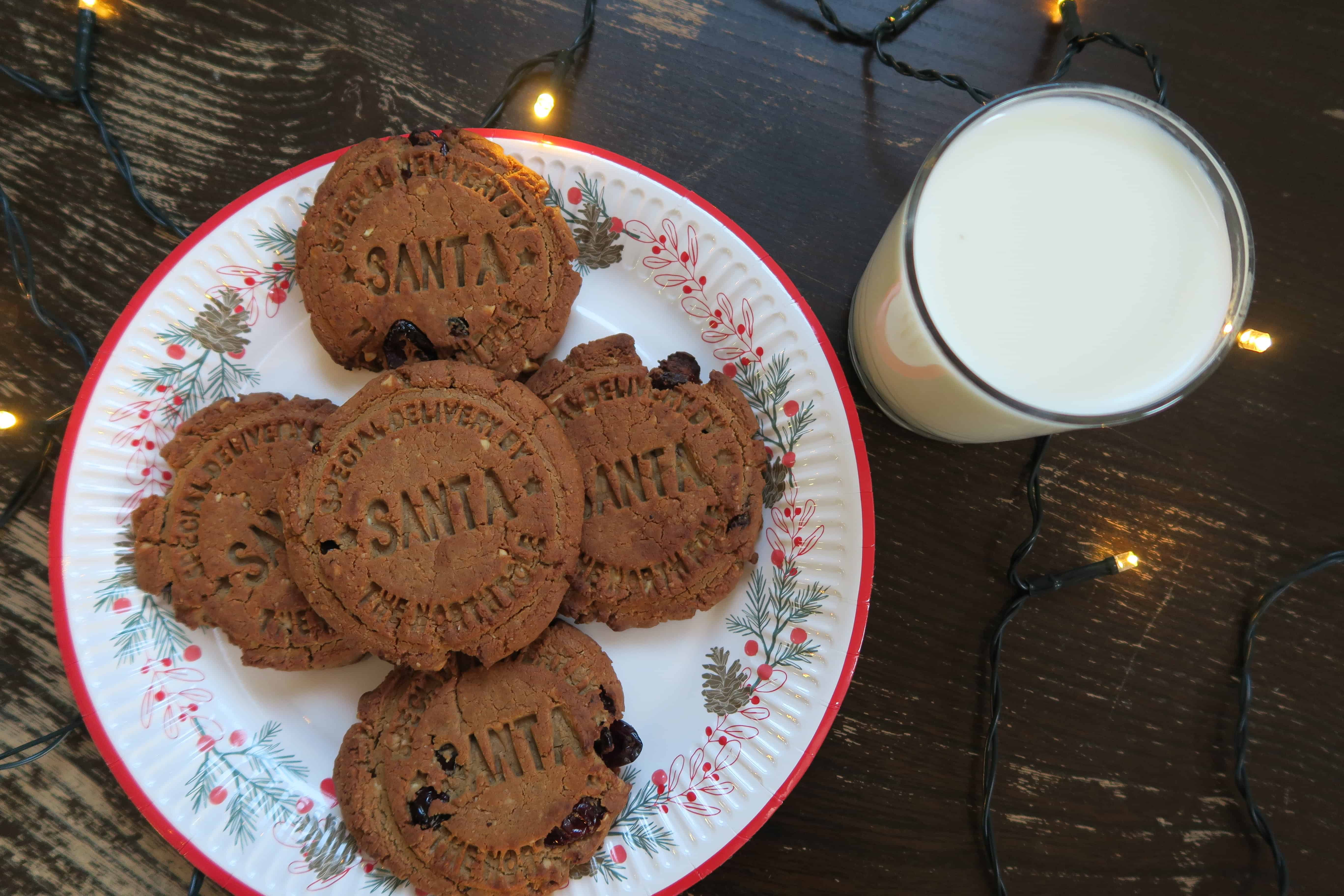 gluten-free-spiced-christmas-protein-cookies-15