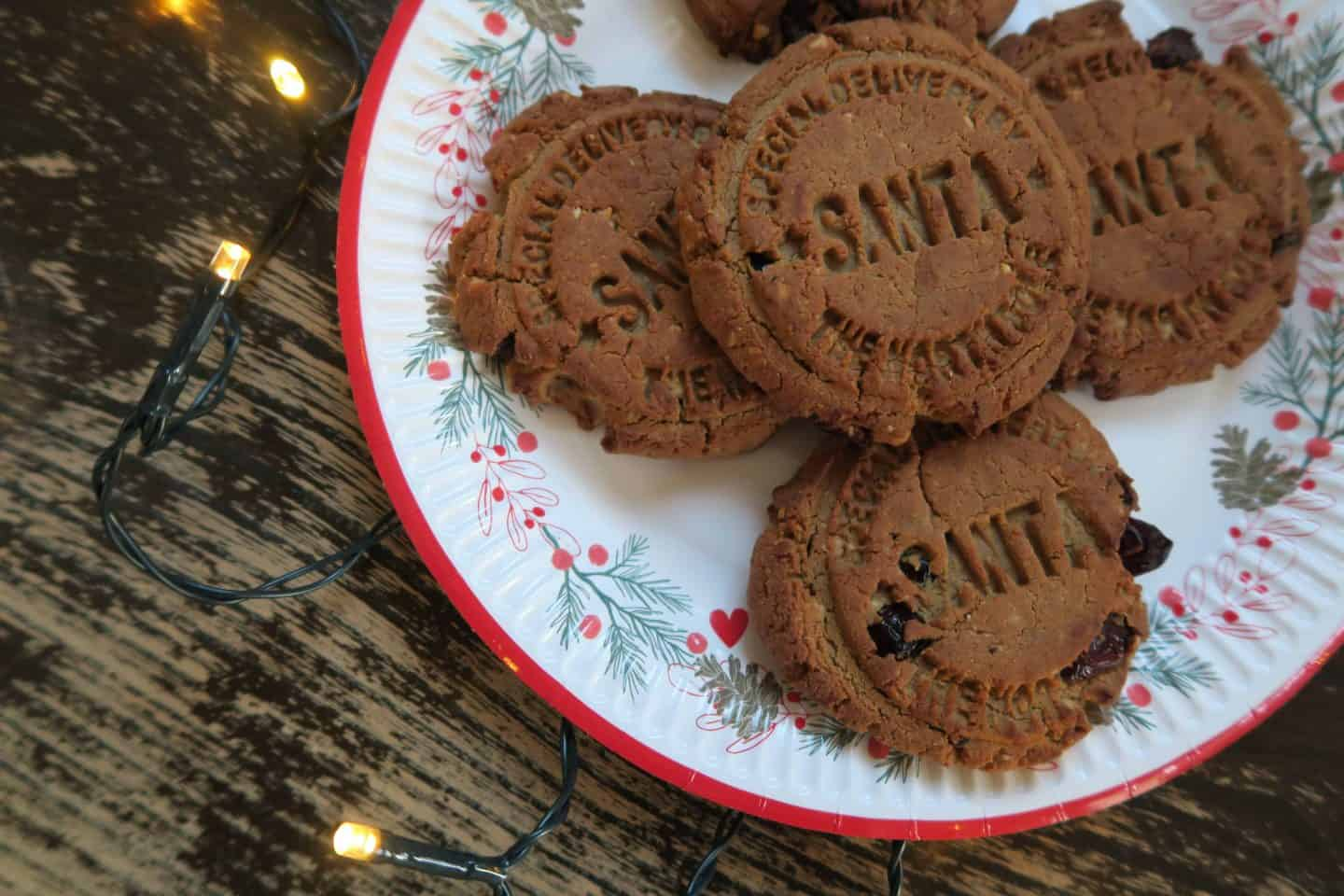 Gluten Free Dairy Free Spiced Protein Christmas Cookies