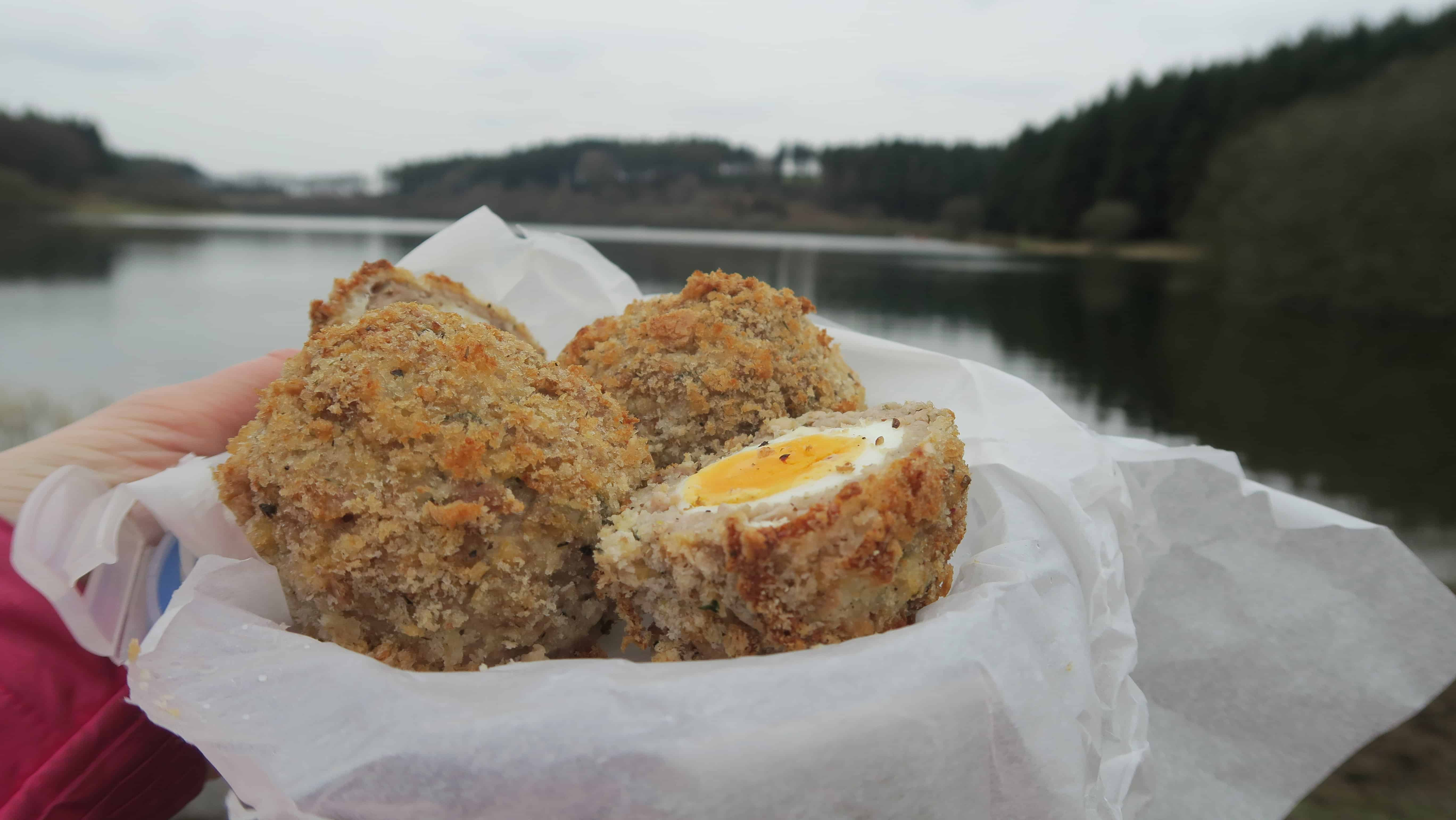 gluten free scotch egg recipe 12
